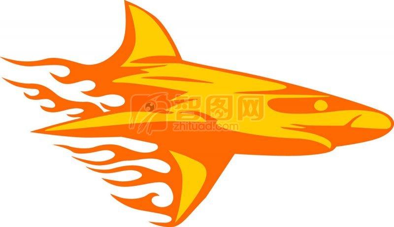 鲨鱼花纹元素02