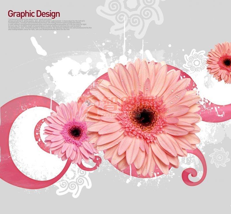 粉红色鲜花花纹