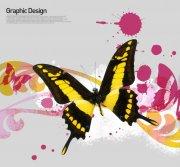 黄黑色蝴蝶花纹