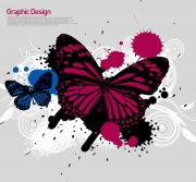 深色蝴蝶花纹
