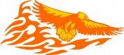 橘黄色雄鹰花纹
