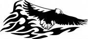 飞翔的雄鹰花纹元素