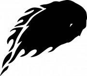 黑色花纹元素01