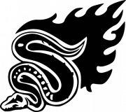 蛇花纹元素