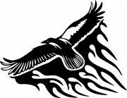 雄鹰花纹设计