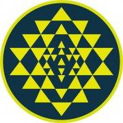 黄色小三角