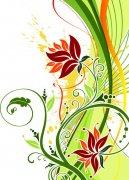 绚烂的植物花纹矢量图