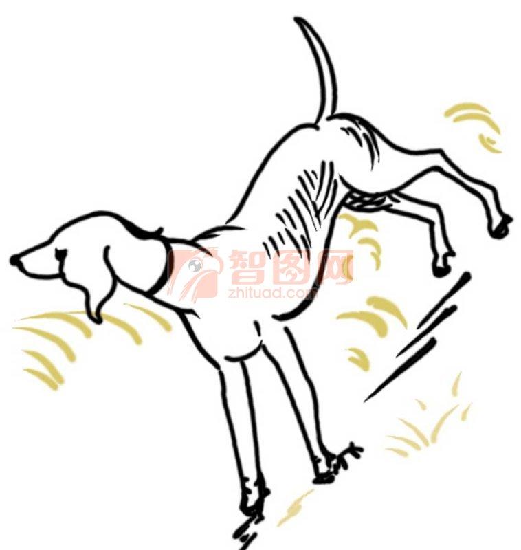 小狗脸简笔画5张_动物简笔画