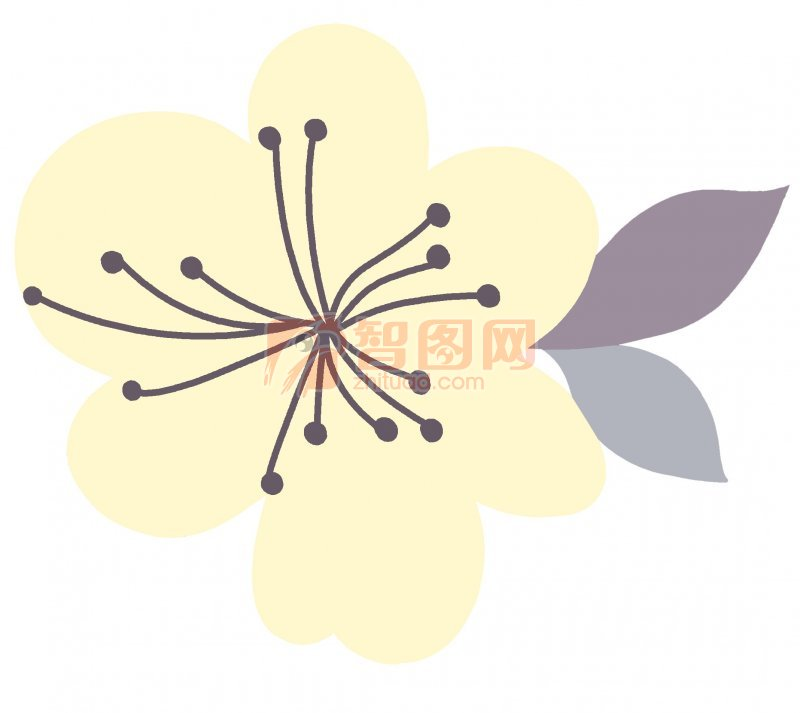 说明:-樱花绽放 上一张图片:  富贵牡丹 下一张图片:红色海棠花