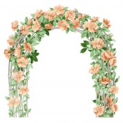 花朵边框素材