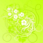 白色花纹素材