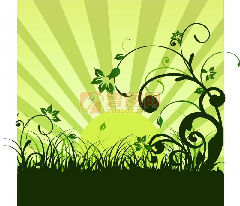 花纹花边  关键词: 绿色放射背景