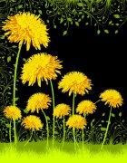 黄色大花花纹