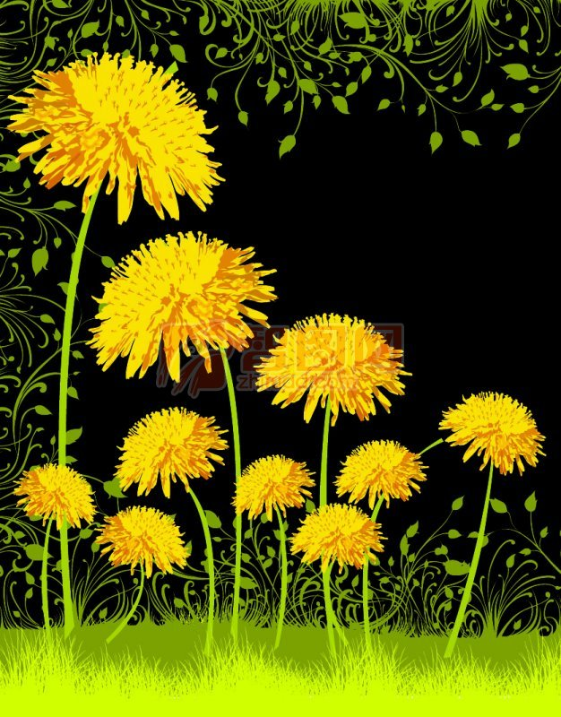 黃色大花花紋