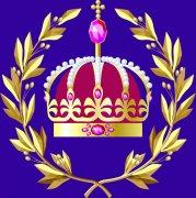 皇冠花紋設計