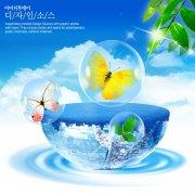 透明球中的蝴蝶