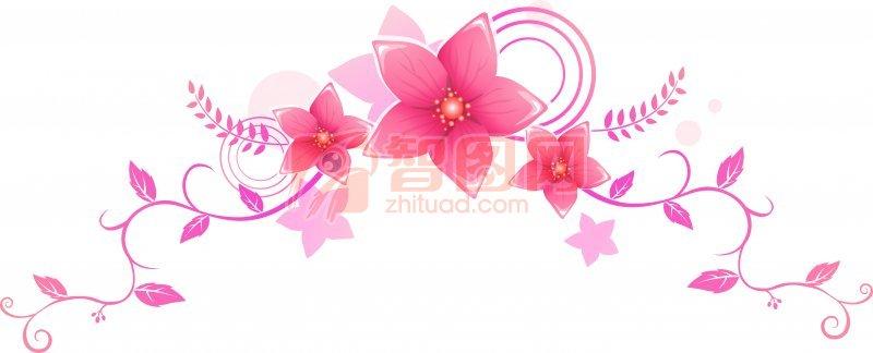 鲜红的五瓣花朵