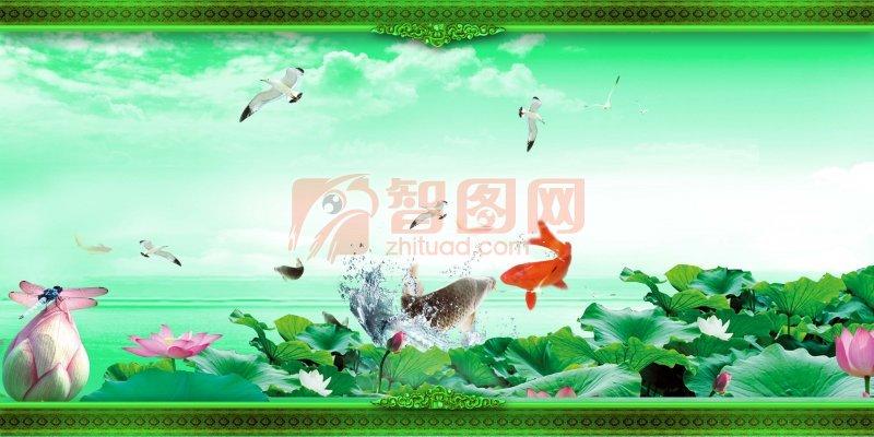 鲤鱼戏荷 荷花图