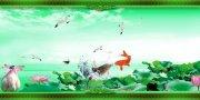 鯉魚戲荷 荷花圖