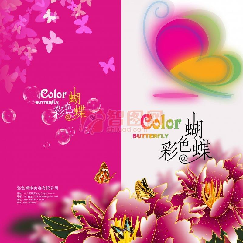 生物花卉 彩色蝴蝶 折页