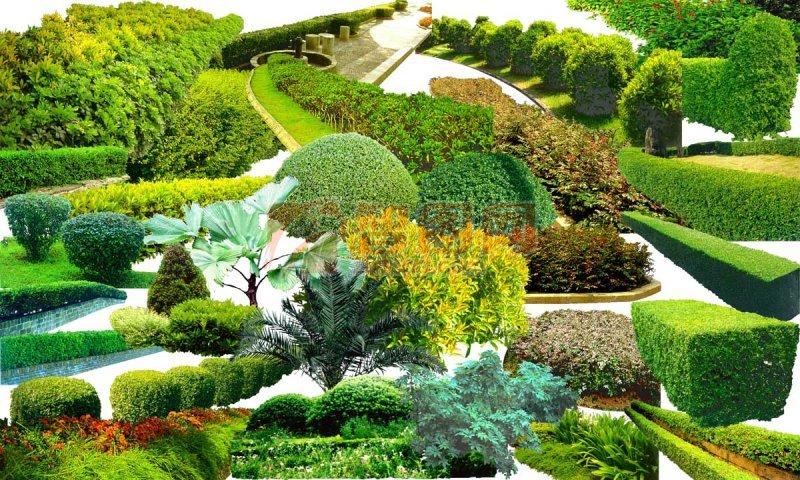 自然风景素材