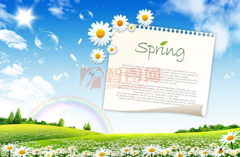 春天草地风景