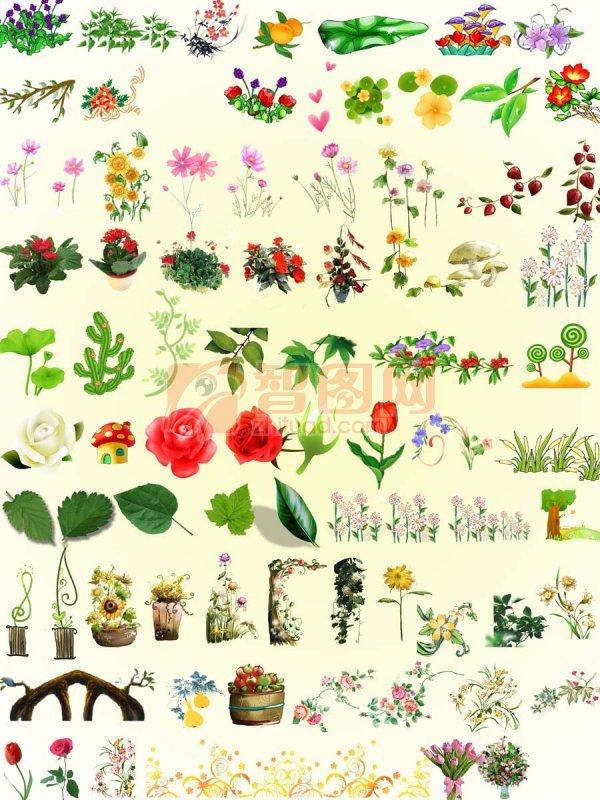 花邊 花草 樹葉