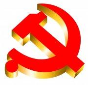 立体党徽标识