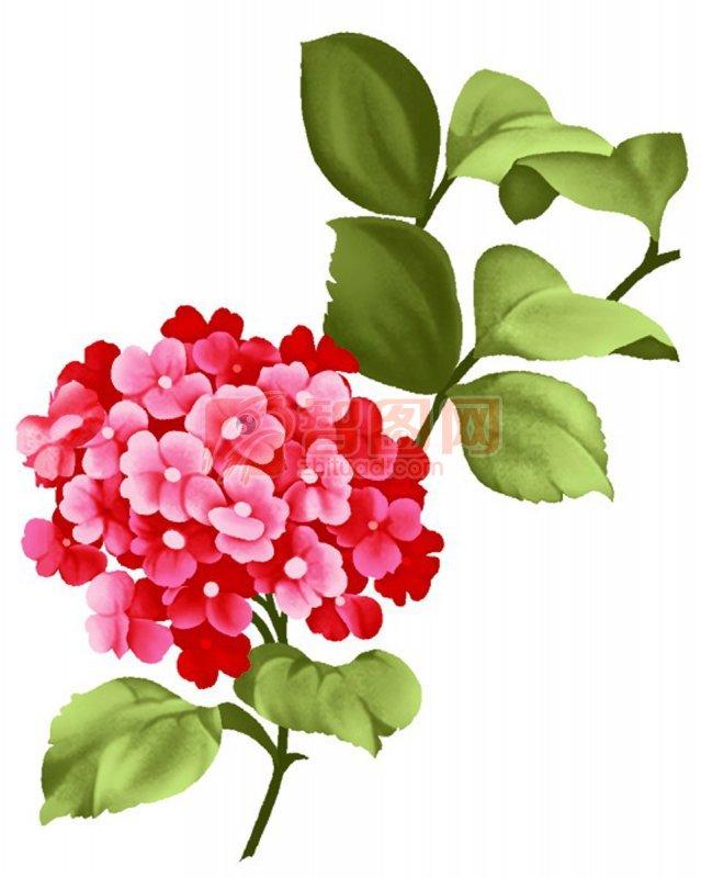 粉红色花朵