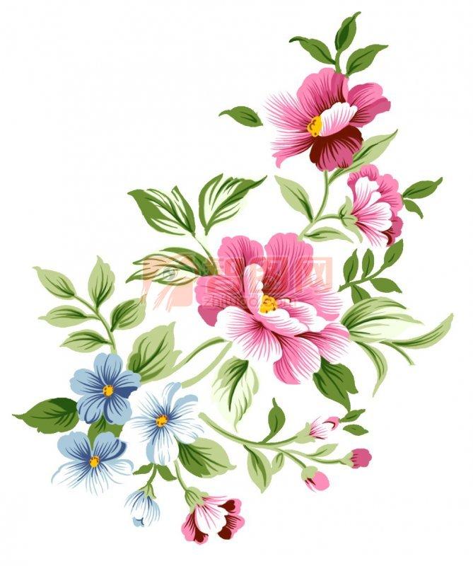 蓝色小花朵