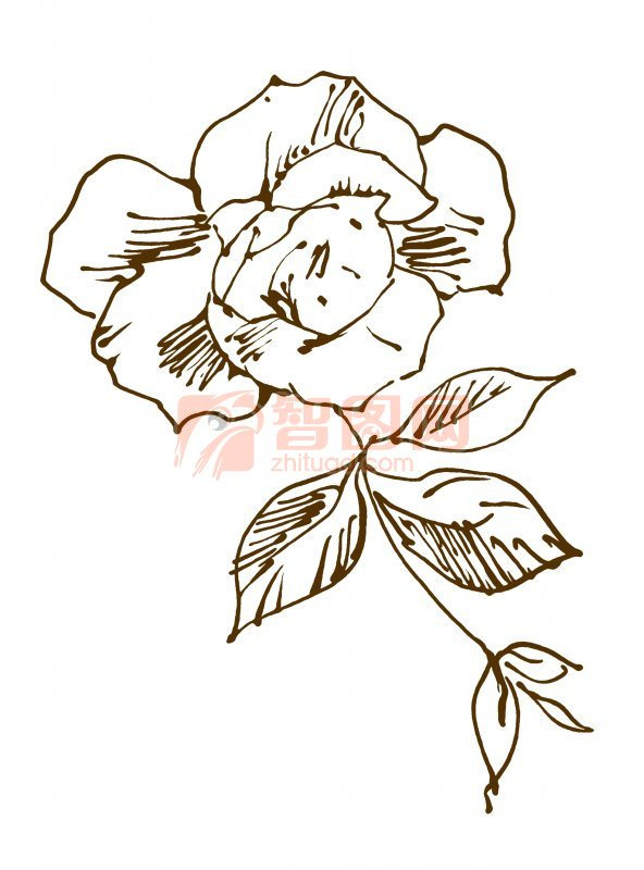 底纹边框 装饰花边  关键词: 说明:-玫瑰花朵 上一张图片:   素描玫瑰