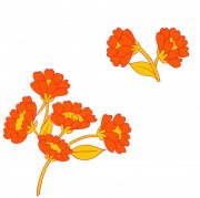 橘黄色花纹设计