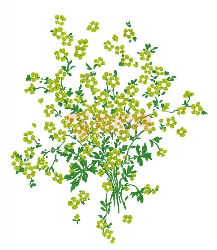 绿色花纹元素
