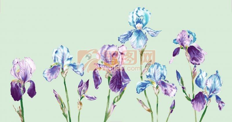 鲜花花纹设计