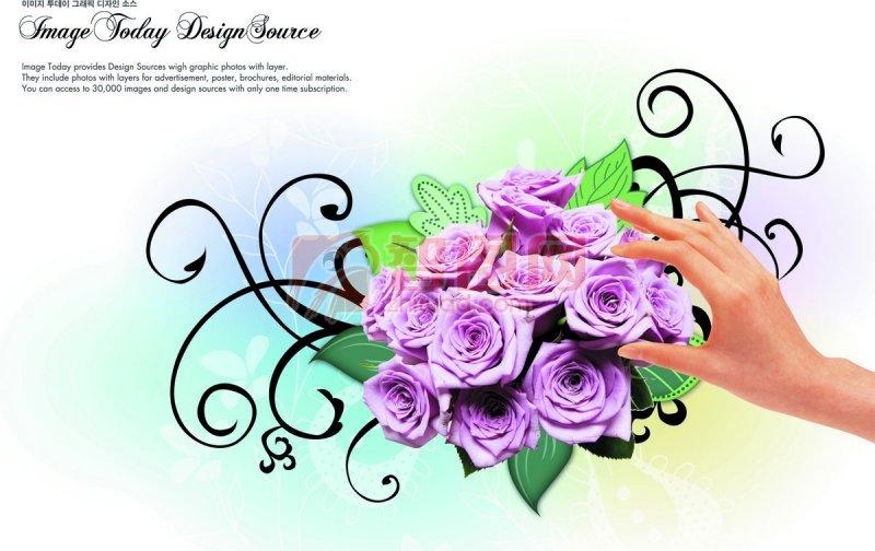 玫瑰花紋設計