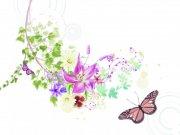 粉色花纹设计