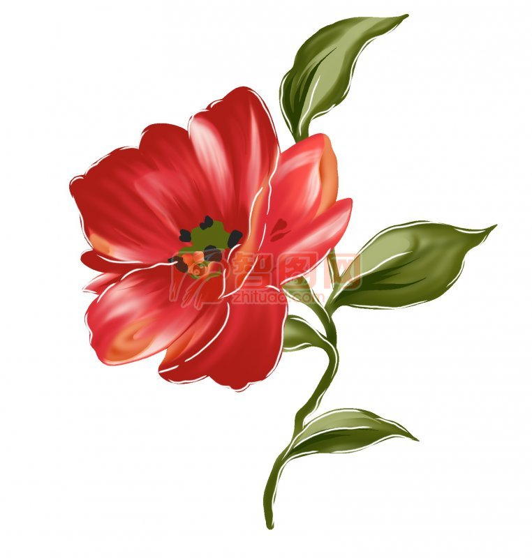 红色鲜花花纹