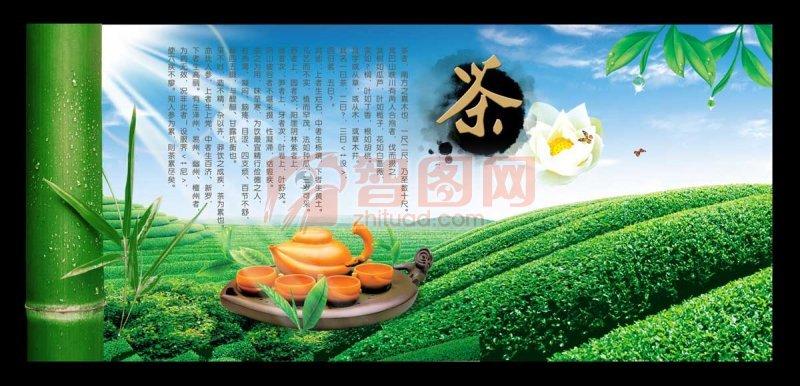 茶园海报设计