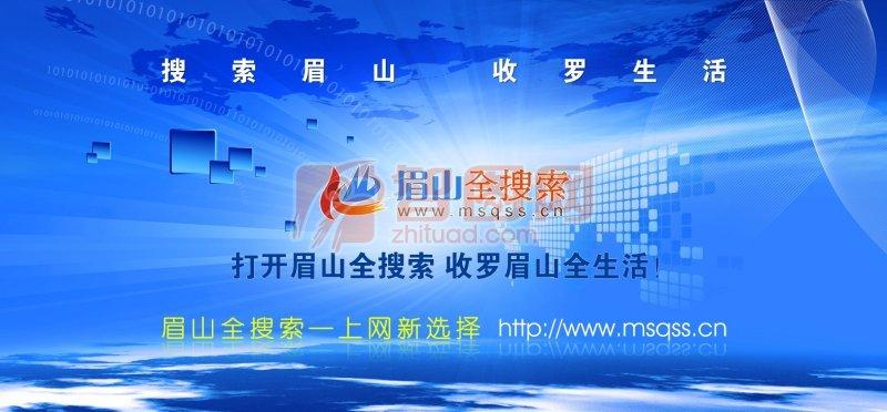 眉山网站海报宣传