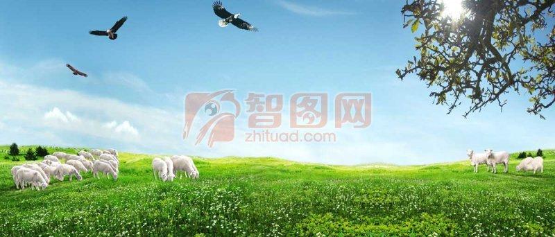 草原風景 春天草原風景