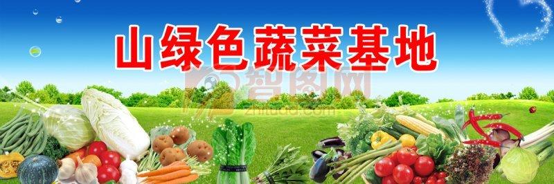 山绿色蔬菜基地
