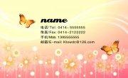 蝴蝶元素名片