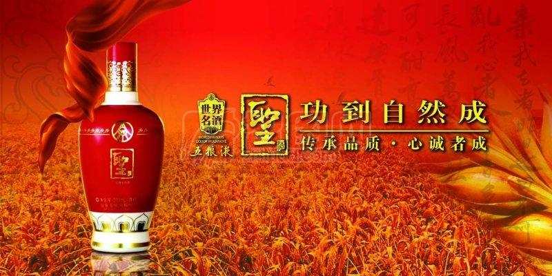 五粮液广告模板6