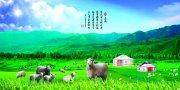 草原山羊海报