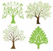 树木花纹设计