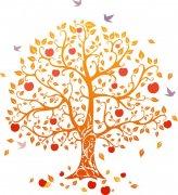 紛飛鳥兒的樹