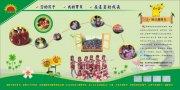 幼儿园画册版式设计
