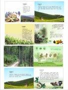 茶叶广告画册
