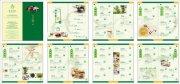 菜谱画册版式 茶文化宣传画册