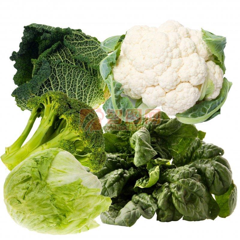 綠色蔬菜分層文件